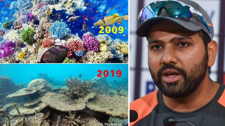 Rohit Sharma's #10YearChallenge Has an Important Message For All of Us, View Pic!