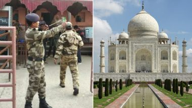 Monkey Menace At Taj Mahal: Catapults Given to CISF Personnel To Safeguard Tourists
