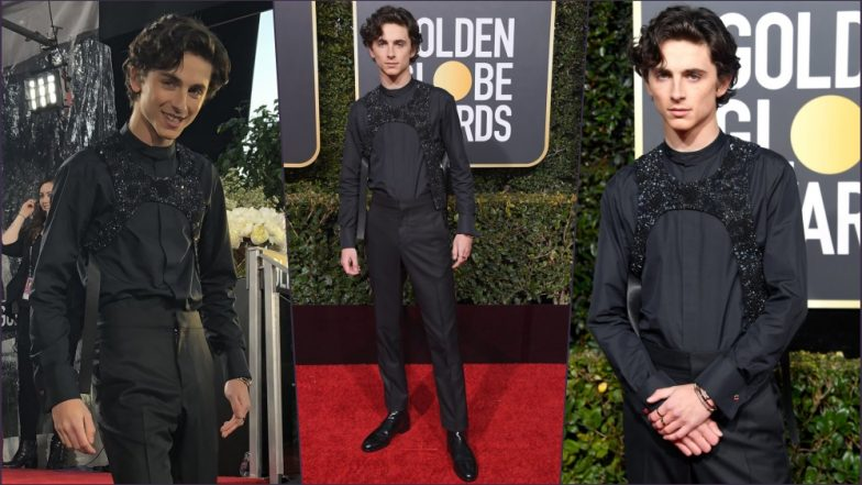 Timothée Chalamet Wears Louis Vuitton 'Embroidered Bib' and Not a Harness at Golden Globes 2019 Red Carpet (See Pics)