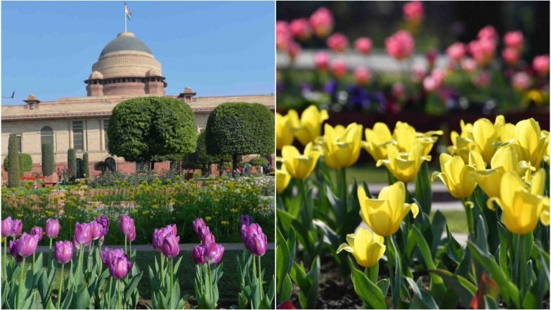 Udyanotsav 2019 Dates & Tickets: Rashtrapati Bhavan's Mughal Gardens to Open for Visitors; Book Online at rb.nic.in