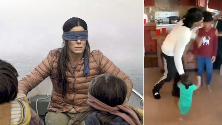 Netflix Warns Viewers Against Viral #BirdBoxChallenge; Urges People Not to 'End Up Hospital Due to Memes'