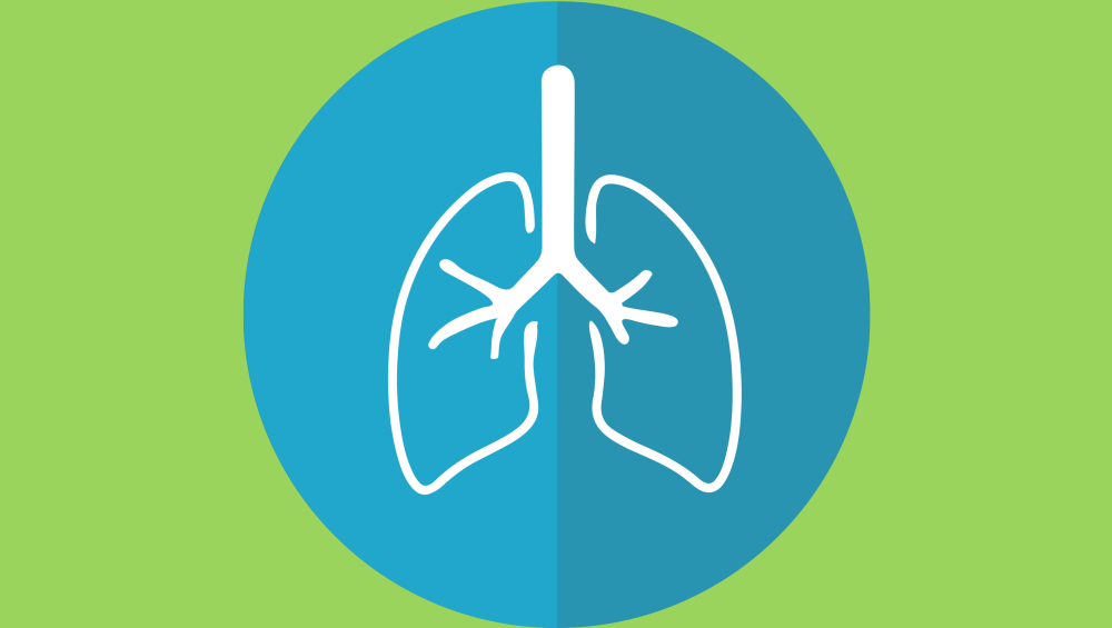 From Household Cleaners to Cosmetics, Toxic Products That Can Be As Damaging To Your Lungs as Smoking Cigarettes