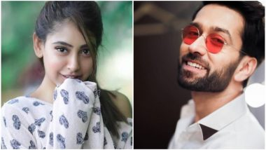 Ishqbaaz – Pyaar Ki Ek Dhinchak Kahaani: Here's How Nakuul Mehta and Niti Taylor's Characters Will Fall in Love – Deets Inside