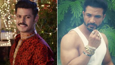 Neil Bhatt's Exit Paves The Way For Mohammad Nazim's Entry Into Colors' Roop- Mard Ka Naya Swaroop!
