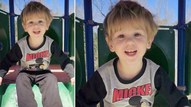 Mowgli in US? Missing Toddler From North Carolina Returns Home After 2 Days, Says Was 'Hanging Out With a Bear in the Woods'