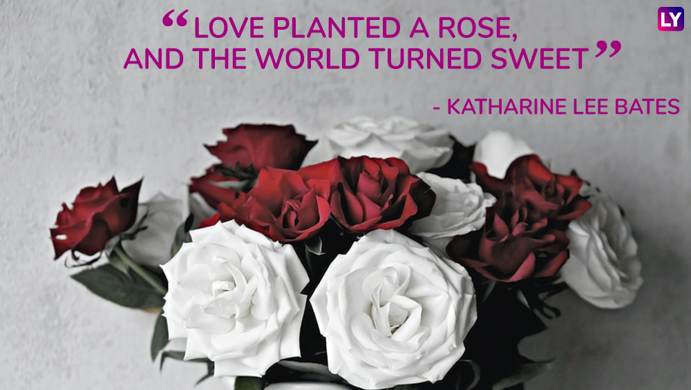 Rose Day 2019 Romantic Quotes 7 Beautiful Lines To Share With Your