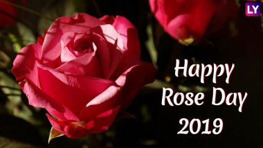 Rose Day 2019 Romantic Quotes: 7 Beautiful Lines to Share With Your Lover This Valentine Week