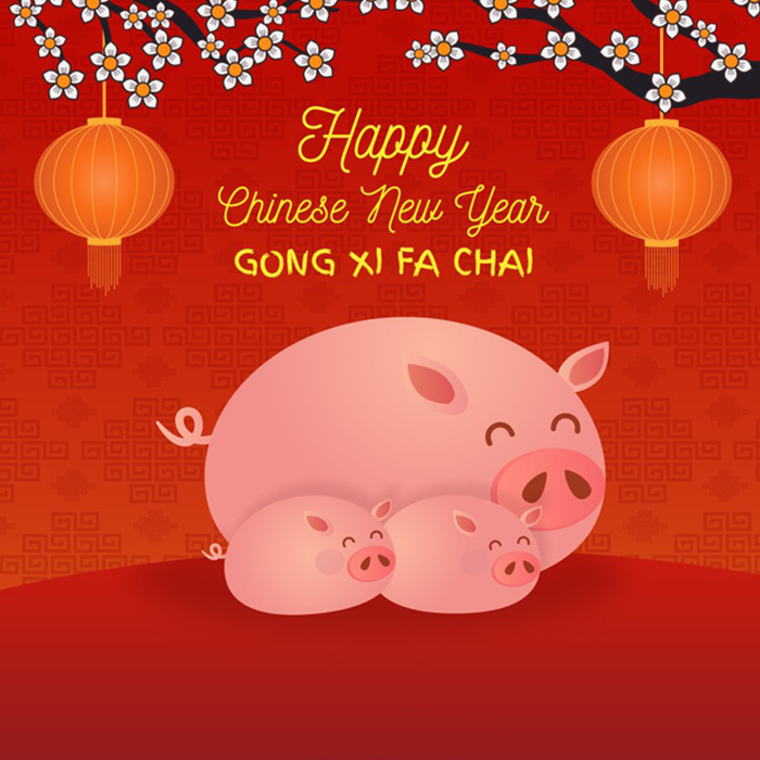 Chinese New Year 2019 Funny Greetings: Cute Pig Memes ...