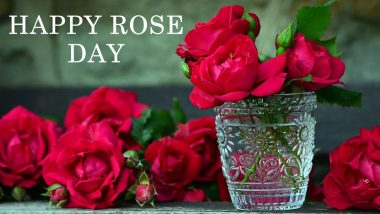 Rose Day 2019: Forget Flowers, Get Rose-Themed Gifts for Your SOS to Celebrate Valentine's Week