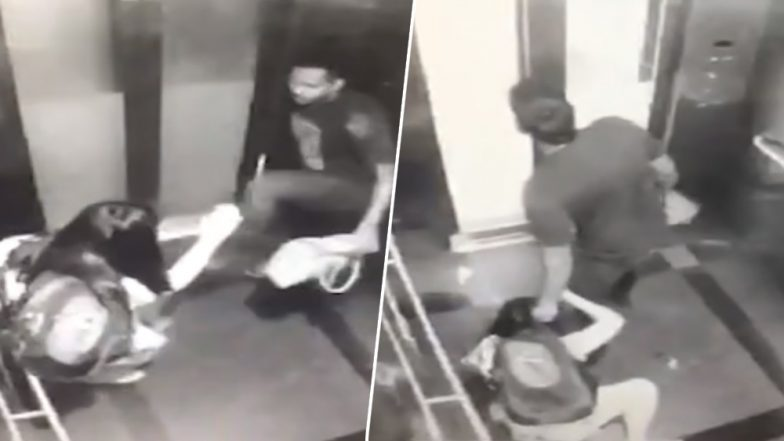 Woman Brutally Thrashed, Robbed Inside Metro Station Lift; Watch Horrific Video