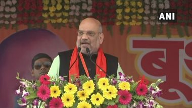 Lok Sabha Elections 2019: BJP Workers Want Amit Shah to Contest from Gandhinagar