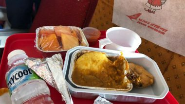 Cockroach Found in Food Served to Air India Passenger, Pictures Go Viral