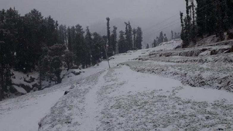 Hailstorm, Heavy Rains Lash Delhi NCR, Punjab, Haryana; Snowfall In Jammu & Kashmir, Himachal; See Pics And Videos