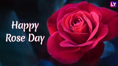 Rose Day 2019 Greetings & Messages: SMS, GIF Images, WhatsApp Stickers to Wish Happy Rose Day to Your Loved Ones This Valentine's Week
