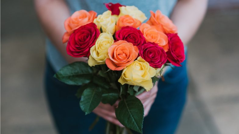 Rose Day 2019 Wishes on First Day of Valentine Week: WhatsApp Stickers, GIF Image Messages, Instagram Quotes, SMS to Send Happy Rose Day Greetings