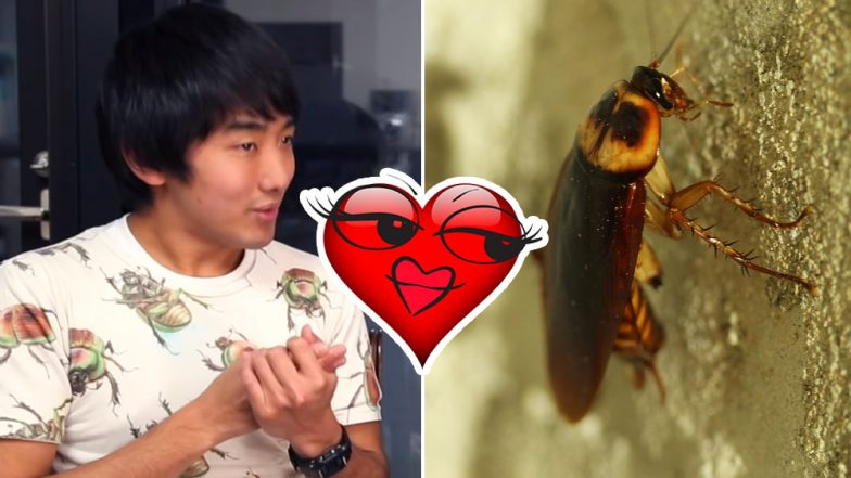 Japanese Man Claims He Dated a Cockroach, Fantasised About Having Sex and Ate Her After She Died, Watch Video!