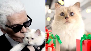 Karl Lagerfeld's Cat Choupette Could Own His $200 Million Fortune? Know 5 Interesting Things About This Rich Feline That Would Make You Jealous
