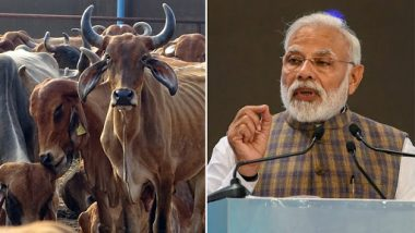 Narendra Modi Vows for Cattle Protection in Mathura, Says 'Nobody Can Repay a Cow's Debt'