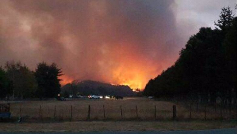 New Zealand Forest Fires Set to Get Worse, Thousands Flee Their Homes
