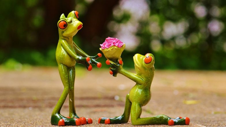 Propose Day 2019 Date in Valentine Week: Romantic Quotes and Images To Express Your Love Ahead of Valentine's Day