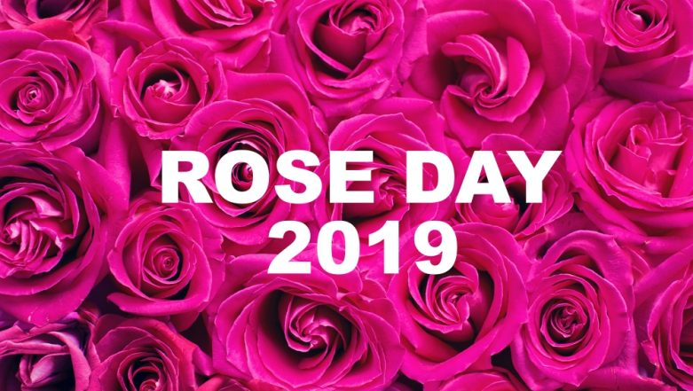 When Is Rose Day 2019 in Valentine Week? Date and Significance of Rose Day Before Valentine's Day
