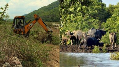 NDA Govt Risks Wildlife by Giving 20% More Infra Clearances Than UPA-II Tenure, Activists Sound Red Alert