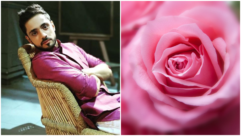 Rose Day 2019: Pearl V Puri, Tejasswi Prakash, Helly Shah, Adnan Khan- TV Celebs Share ...