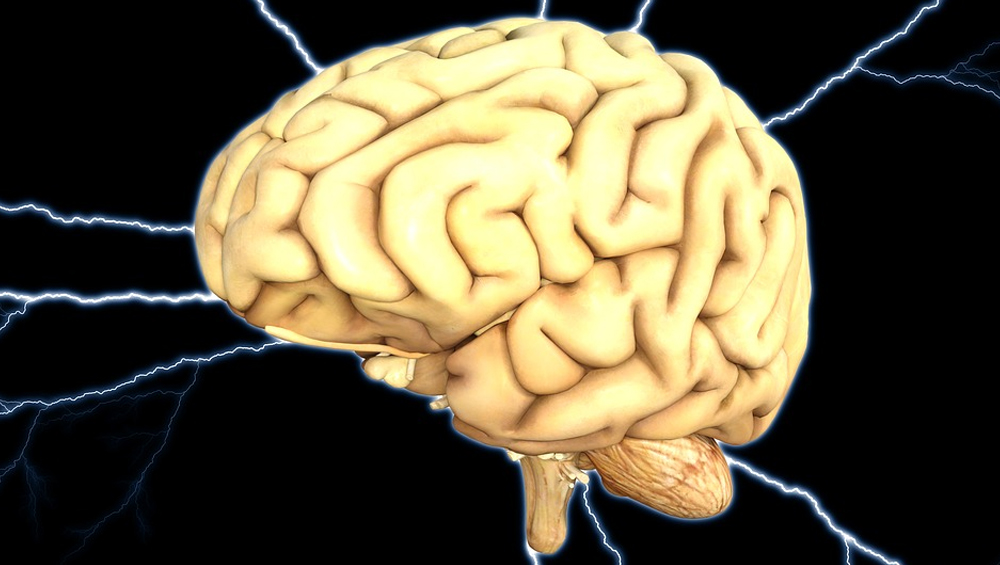 Autistic People Have Symmetrical Brain Hemispheres: Study