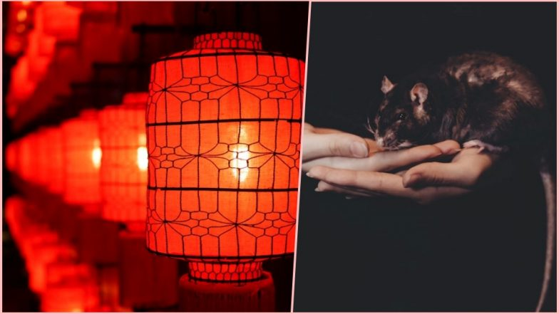 Chinese New Year 2019 Celebrations Day 3: Here's Why the Wedding of Rats Take Place on Third Day of the Lunar New Year