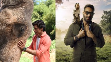 Total Dhamaal, Junglee: Upcoming Movies That Extend the Fun to the Animal Kingdom - Watch Video