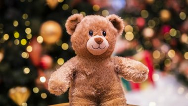 Teddy Day 2019 Date: Adorable Quotes, GIF Images & Instagram-Worthy Happy Teddy Day Captions to Share With Your Loved One This Valentine Week