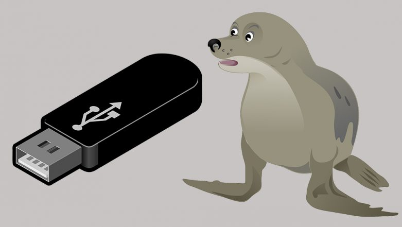Working USB Found From Seal's Poop! Scientists From New Zealand are Looking For its Owner