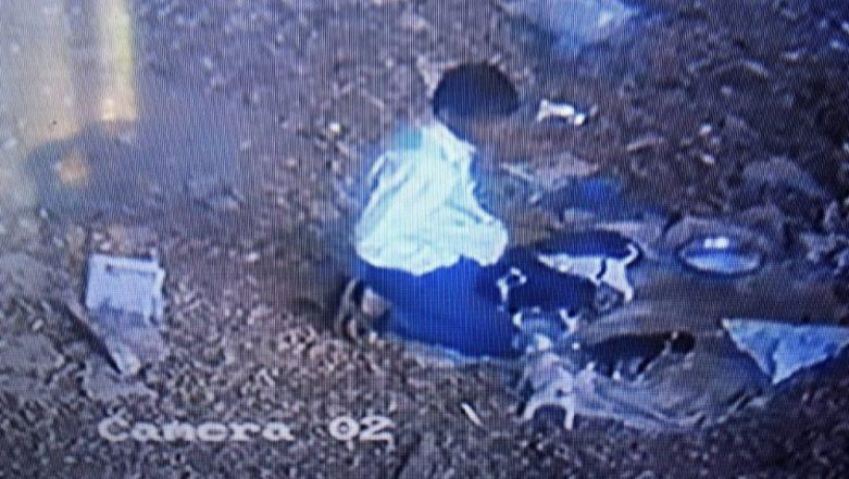 Chennai Shocker: Man Allegedly Sexually Assaults 15-Day-Old Puppies, Caught on CCTV Camera