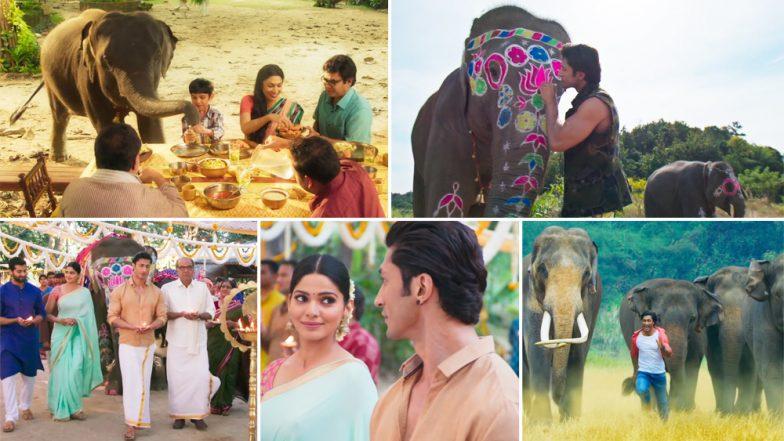Junglee Song Fakeera Ghar Aaja: Jubin Nautiyal's Soothing Voice Makes This Vidyut Jamwal and Pooja Sawant Number a Soulful Melody - Watch Video