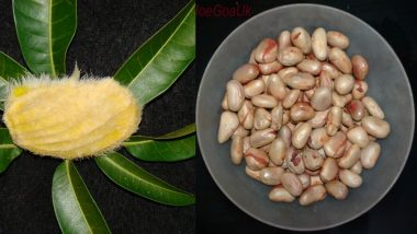 Fruit Seeds Health Benefits: Mango, Jamun, Jackfruit+ 3 Other Kernels That Are Super Nutritional!