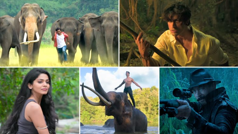 Junglee Box Office Collection Day 7: Vidyut Jammwal Starrer Does Well in Mass Circuits, Rakes in Rs 21.20 Crore