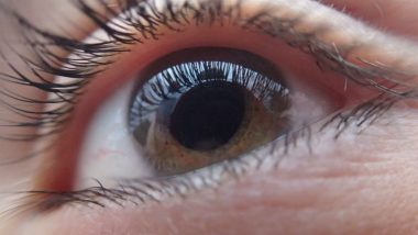 Protein Linked to Commonest Cause of Blindness Identified