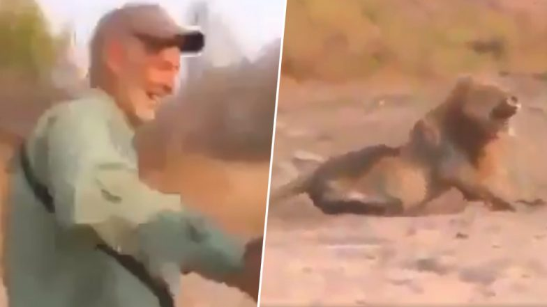 Video of Man Hunting Sleeping Lion Goes Viral, Social Media Users Condemn 'Cowardly' Act of Trophy Hunting