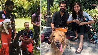 VIVO IPL 2019: Virat Kohli, Anushka Sharma and AB de Villiers Have a Fun Time Playing With Puppies! See Cute Pics