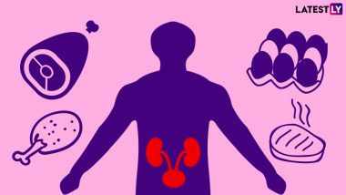 World Kidney Day 2019: Can Too Much Protein Damage Your Kidneys?
