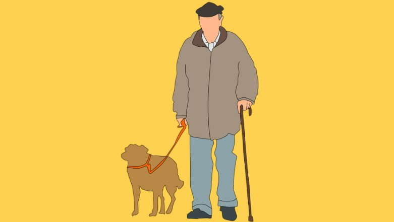 Walking Dogs May Be Dangerous for Senior Citizens, Warns New Study