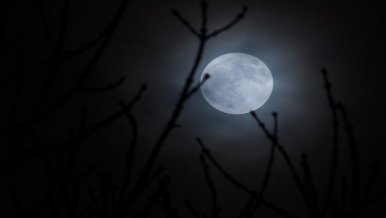 Full Worm Supermoon 2019: Know About the Last Supermoon of This Year on March 20