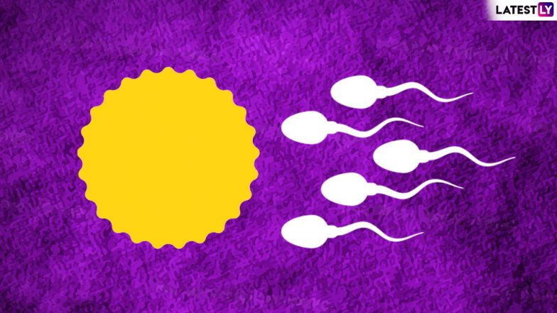 How to Increase Sperm Count with Diet: 10 Best Foods to