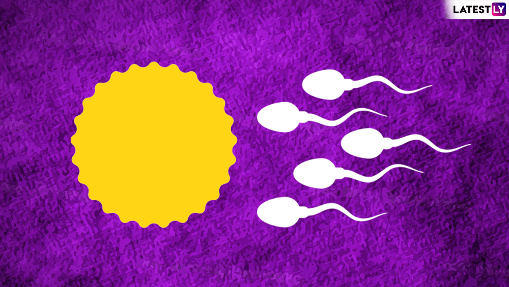 Sexual and Reproductive Health Awareness Day 2020: Fertility-Boosting Foods to Improve Female Egg Quality and Sperm Health in Men