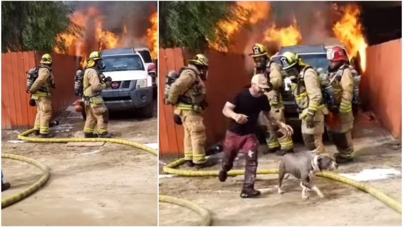 California Man Risks Life To Saves His Dog Trapped Inside Burning House; Dramatic Fire Rescue Video Goes Viral