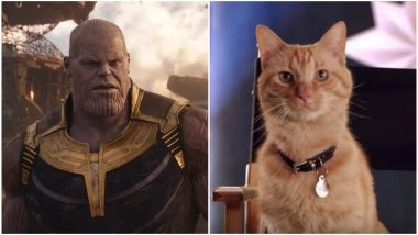 Captain Marvel: Goose the Cat Will Defeat Thanos in Avengers: EndGame, Say Fans After Watching Brie Larson's Superhero Film – Read Tweets