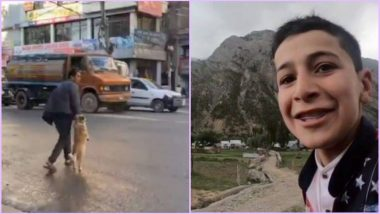Viral Videos of the Week: Dog Holding Owner's Hand to Cross Street, #SayNoToWar and Other Trending Videos You Got to See
