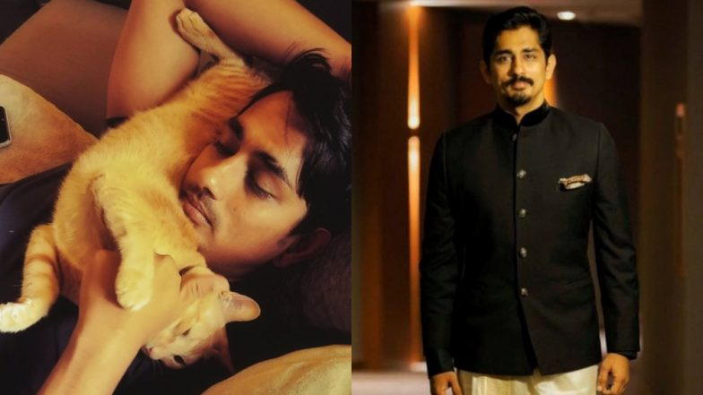 Happy Birthday Siddharth! 5 Reasons Why The Actor Is A True Gem To The South Industry!
