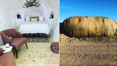 Would You Stay in a Potato? Giant Idaho Potato Converted into Airbnb Rental (See Lovely Pics)