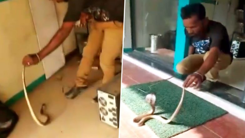 Snake Found Inside ATM in Coimbatore, Rescued - Watch Video